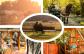 Varázslatos őszi pihenés a természet lágy ölén! Ezernyi élmény, 3 nap/2 éj felhőtlen kikapcsolódás vár rátok a Kerca Bio Farmon, a festői szépségű Őrség szívében, egy lombház idilli csendjében! Természetközeli környezet, bőséges reggeli helyi finomságokból és színes programkínálat gondoskodnak az emlékezetes pillanatokról! Őszi feltöltődés 2 főre csak 39.000 Ft-ért!